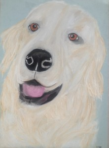 Golden Retriever gemalt