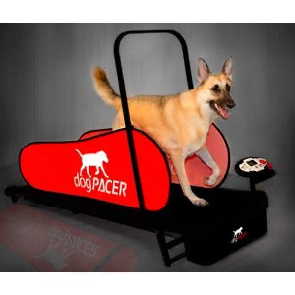 dogPACER-Hundelaufband-LF3-1.1800a